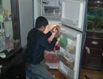 Điện Lạnh Bách Khoa - trung tâm sửa chữa tủ lạnh hitachi uy tín